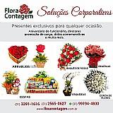 Floricultura em contagem que faz entrega