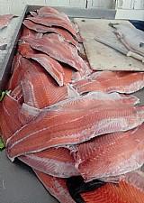 Distribuidora de pescados.