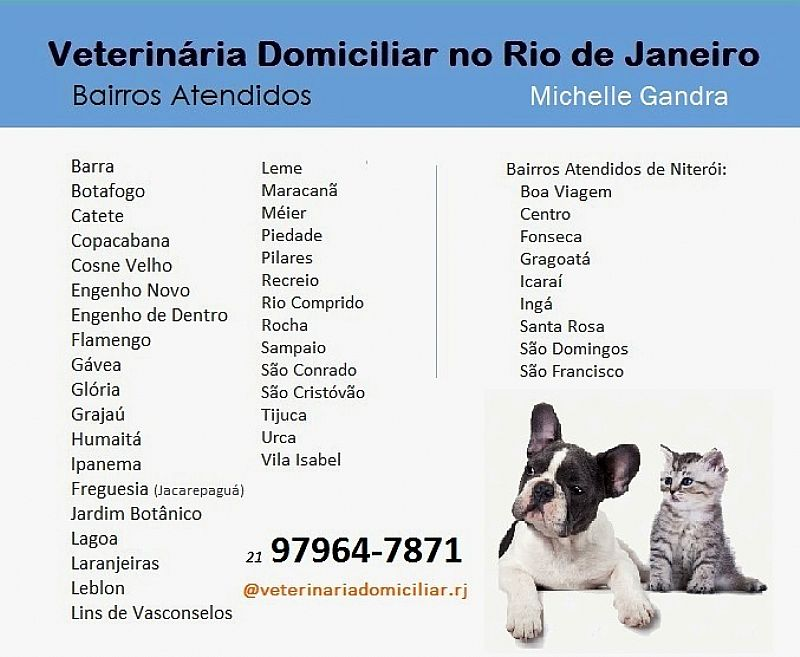 Veterinaria domiciliar para caes e gatos