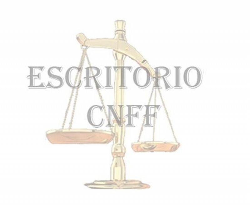 Advogada - direito de familia