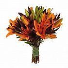 Floricultura na Sumare (11) 3495-7555 - 28-7515 VisaFlores